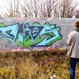 dsci0151